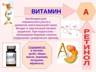 ВИТАМИН A Необходим для нормального роста и развития эпителиальной ткани. Входит
