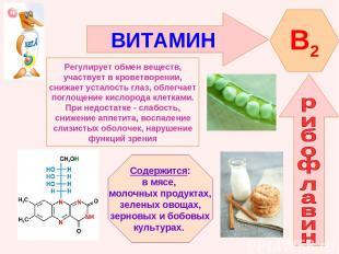ВИТАМИН B2 Регулирует обмен веществ, участвует в кроветворении, снижает усталост
