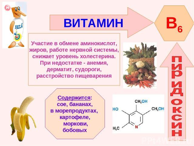 ВИТАМИН B6 Участие в обмене аминокислот, жиров, работе нервной системы, снижает уровень холестерина. При недостатке - анемия, дерматит, судороги, расстройство пищеварения Содержится: сое, бананах, в морепродуктах, картофеле, моркови, бобовых