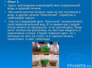 Опыт 1. Цель: наблюдение взаимодействия газированной воды и куриной печени. Мы в