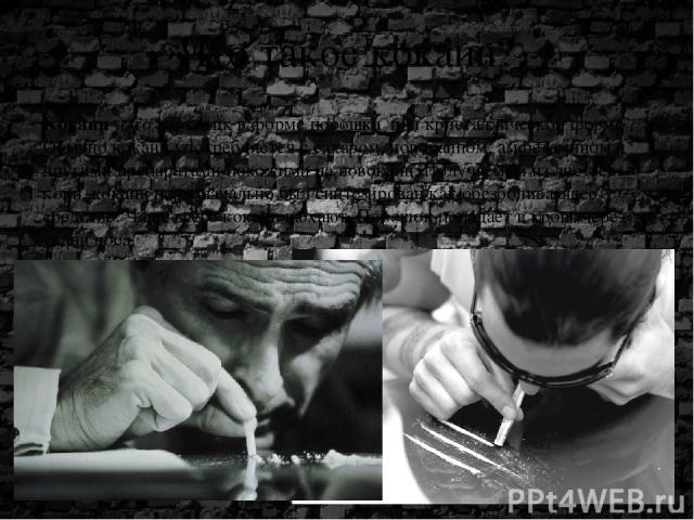 Что такое кокаин? Kокаин- это наркотик в форме порошка или кристаллической форме . Обычно кокаин употребляется с сахаром, новокаином, амфетамином и другими препаратами похожими на новокаин.Получаемый из листьев коки, кокаин первоначально был синте…