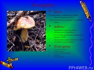 Тема урока Цели: 1.Познакомиться с органическим составом дрожжей, их размножение