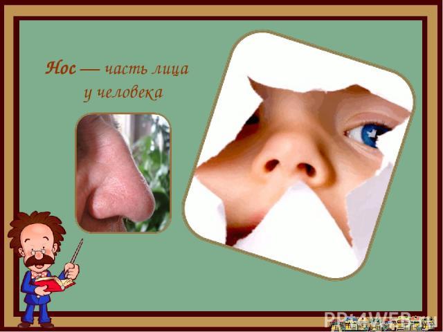 Нос— часть лица у человека