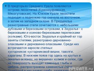 В предгорьях Среднего Урала появляются острова лесостепей (Красноуфимская, Мясог