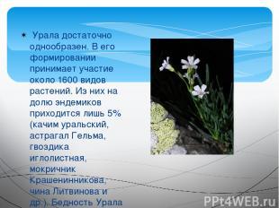 Урала достаточно однообразен. В его формировании принимает участие около 1600 в