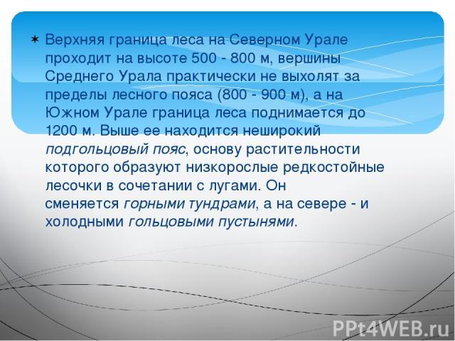 Верхняя граница леса на Северном Урале проходит на высоте 500 - 800 м, вершины Среднего Урала практически не выхолят за пределы лесного пояса (800 - 900 м), а на Южном Урале граница леса поднимается до 1200 м. Выше ее находится неширокий подгольцовы…