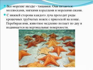 Все морские звезды – хищники. Они питаются: моллюсками, мягкими кораллами и морс