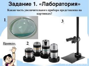 Задание 1. «Лаборатория» Какая часть увеличительного прибора представлена на кар