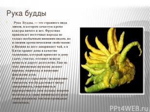 Рука будды Рука Будды, — это странного вида лимон, в котором зачастую кроме кожу
