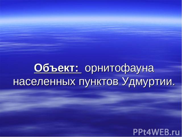Объект: орнитофауна населенных пунктов Удмуртии.