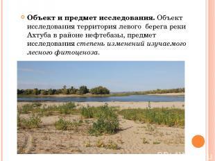 Объект и предмет исследования. Объект исследования территория левого берега реки