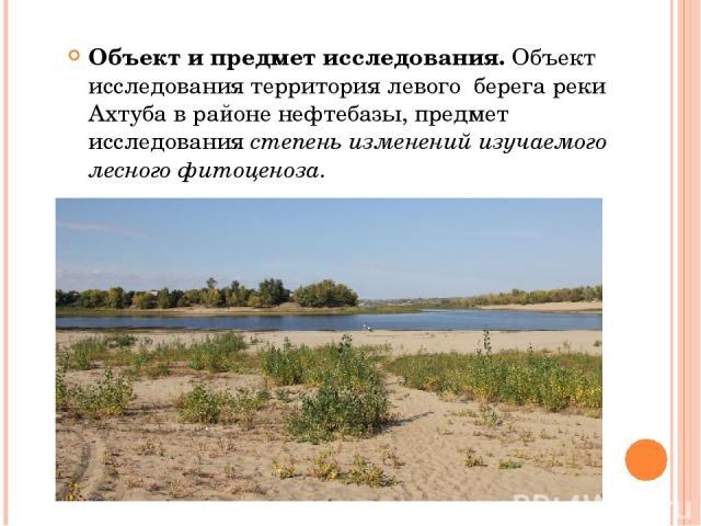 Объект и предмет исследования. Объект исследования территория левого берега реки Ахтуба в районе нефтебазы, предмет исследования степень изменений изучаемого лесного фитоценоза.