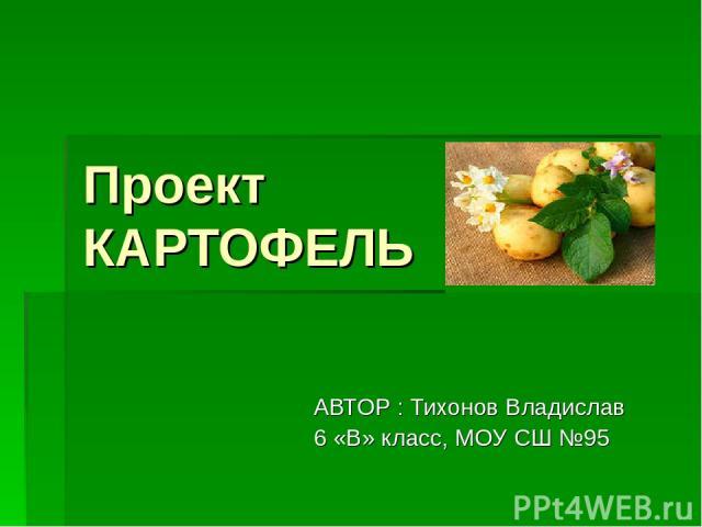 Проект КАРТОФЕЛЬ АВТОР : Тихонов Владислав 6 «В» класс, МОУ СШ №95