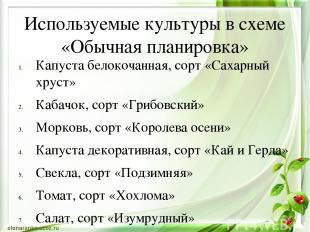 Используемые культуры в схеме «Обычная планировка» Капуста белокочанная, сорт «С
