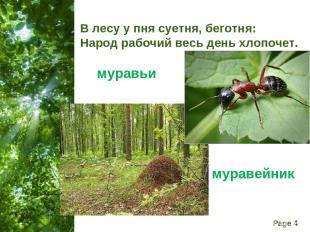В лесу у пня суетня, беготня: Народ рабочий весь день хлопочет. муравьи муравейн