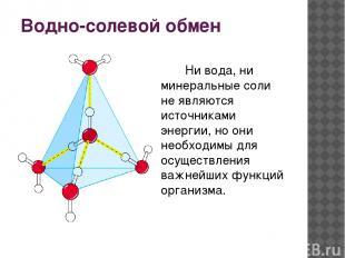 Водно-солевой обмен Ни вода, ни минеральные соли не являются источниками энергии