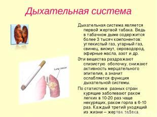 Дыхательная система Дыхательная система является первой жертвой табака. Ведь в т