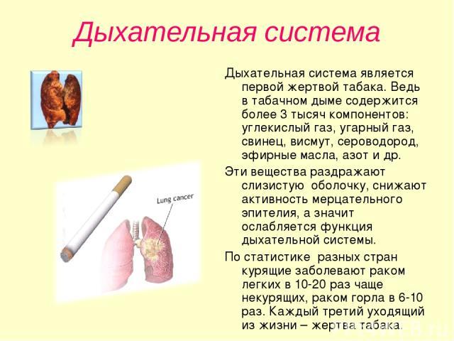 Дыхательная система Дыхательная система является первой жертвой табака. Ведь в табачном дыме содержится более 3 тысяч компонентов: углекислый газ, угарный газ, свинец, висмут, сероводород, эфирные масла, азот и др. Эти вещества раздражают слизистую …
