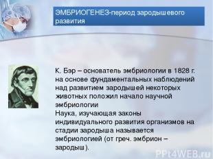 ЭМБРИОГЕНЕЗ-период зародышевого развития К. Бэр – основатель эмбриологии в 1828