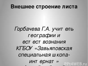 Внешнее строение листа Горбачева Г.А. учитель географии и естествознания КГБОУ «