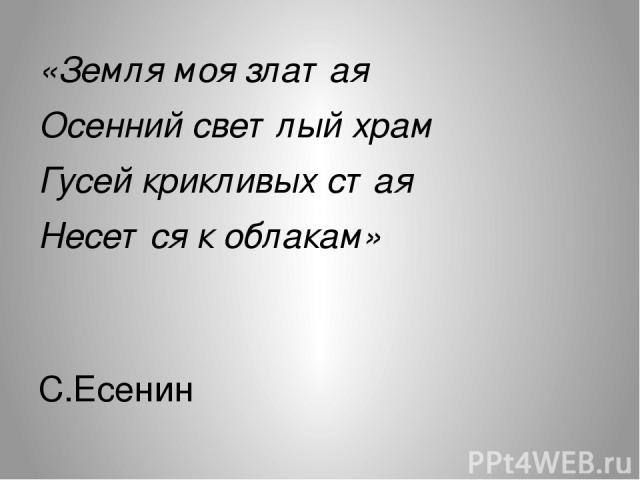 «Земля моя златая Осенний светлый храм Гусей крикливых стая Несется к облакам» С.Есенин
