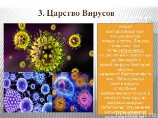 3. Царство Вирусов Неклеточныйинфекционныйагент, который может воспроизводить