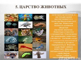 5. ЦАРСТВО ЖИВОТНЫХ традиционно выделяемая категорияорганизмов, в настоящее вре