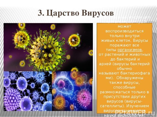 3. Царство Вирусов Неклеточныйинфекционныйагент, который может воспроизводиться только внутри живыхклеток. Вирусы поражают все типыорганизмов, отрастенийиживотныхдобактерийи архей(вирусы бактерий обычно называютбактериофагами). Обнаруже…