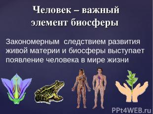 Человек – важный элемент биосферы Закономерным следствием развития живой материи