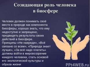 Созидающая роль человека в биосфере Человек должен понимать своё место в природе