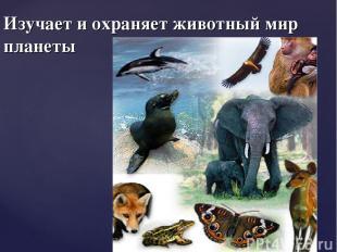 Изучает и охраняет животный мир планеты