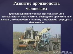 Развитие производства человеком Для выращивания урожая зерновых культур распахив