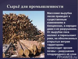 Сырьё для промышленности Массовая вырубка лесов приводит к существенным изменени