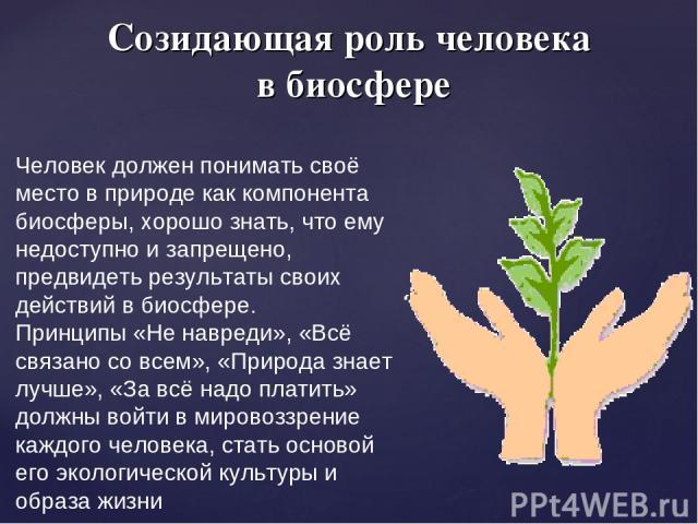 Созидающая роль человека в биосфере Человек должен понимать своё место в природе как компонента биосферы, хорошо знать, что ему недоступно и запрещено, предвидеть результаты своих действий в биосфере. Принципы «Не навреди», «Всё связано со всем», «П…