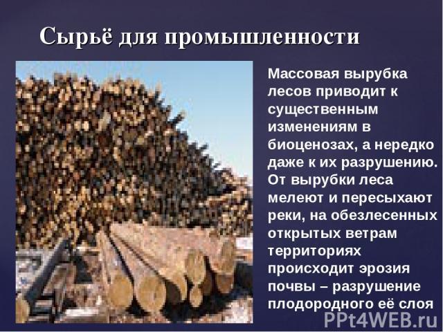 Сырьё для промышленности Массовая вырубка лесов приводит к существенным изменениям в биоценозах, а нередко даже к их разрушению. От вырубки леса мелеют и пересыхают реки, на обезлесенных открытых ветрам территориях происходит эрозия почвы – разрушен…