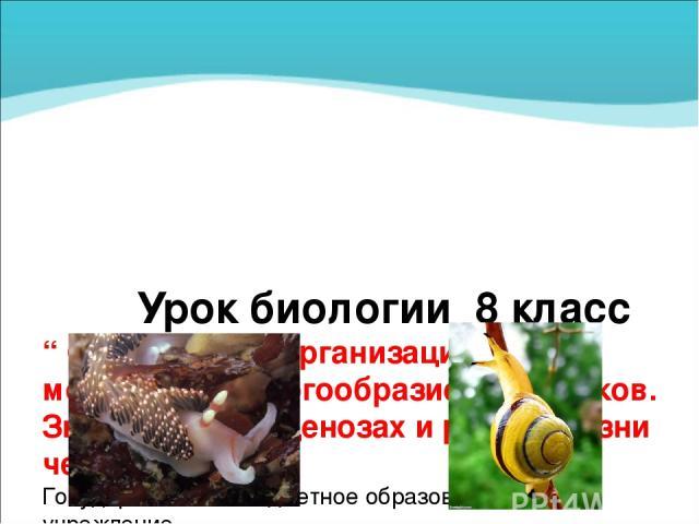 """Урок биологии 8 класс """" Особенности организации моллюсков. Многообразие моллюсков. Значение в биоценозах и роль в жизни человека """" Государственное бюджетное образовательное учреждение Луганской народной республики «УЧЕБНО-ВОСПИТАТЕЛЬНЫЙ КОМПЛЕКС № 8…"""