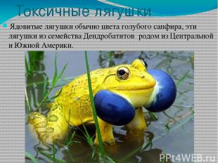 Токсичные лягушки Ядовитые лягушки обычно цвета голубого сапфира, эти лягушки из