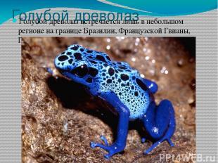 Голубой древолаз Голубой древолаз встречается лишь в небольшом регионе на границ