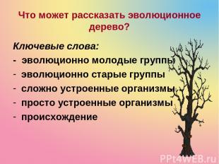 Что может рассказать эволюционное дерево? Ключевые слова: - эволюционно молодые
