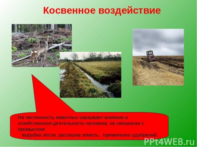 Косвенное воздействие На численность животных оказывает влияние и хозяйственная деятельность человека, не связанная с промыслом: вырубка лесов, распашка земель, применение удобрений.