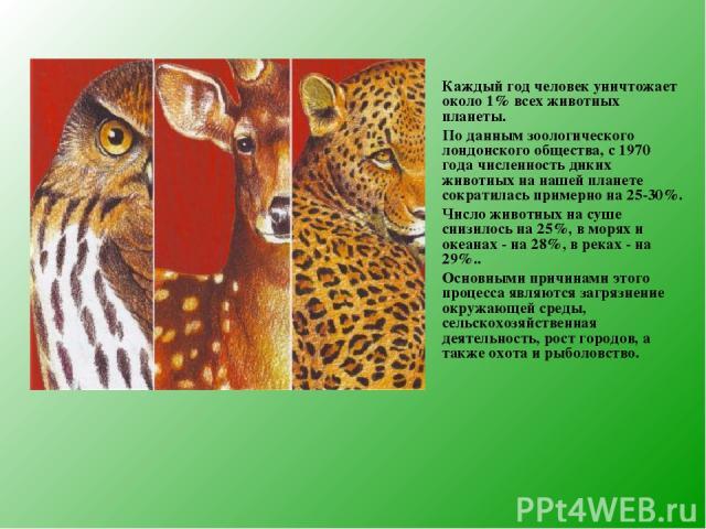 Каждый год человек уничтожает около 1% всех животных планеты. По данным зоологического лондонского общества, с 1970 года численность диких животных на нашей планете сократилась примерно на 25-30%. Число животных на суше снизилось на 25%, в морях и о…