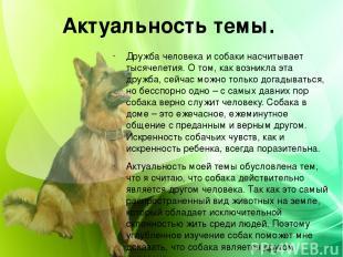 Актуальность темы. Дружба человека и собаки насчитывает тысячелетия. О том, как