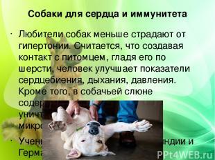 Собаки для сердца и иммунитета Любители собак меньше страдают от гипертонии. Счи