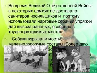 Во время Великой Отечественной Войны в некоторых армиях не доставало санитаров н