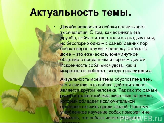 Актуальность темы. Дружба человека и собаки насчитывает тысячелетия. О том, как возникла эта дружба, сейчас можно только догадываться, но бесспорно одно – с самых давних пор собака верно служит человеку. Собака в доме – это ежечасное, ежеминутное об…