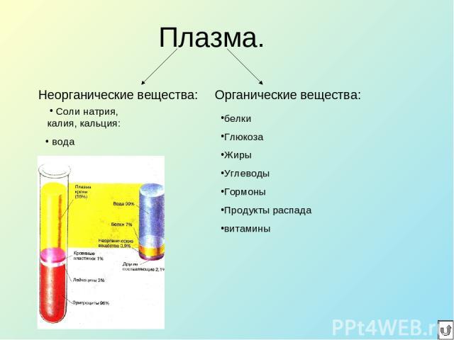Плазма. Неорганические вещества: Органические вещества: белки Глюкоза Жиры Углеводы Гормоны Продукты распада витамины Соли натрия, калия, кальция: вода