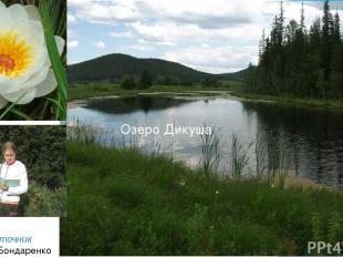 Озеро Дикуша «Вода – источник познания»Бондаренко А.