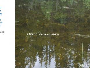 Озеро Черемшанка «Воду мы начинаем ценить не раньше того, как высыхает колодец»