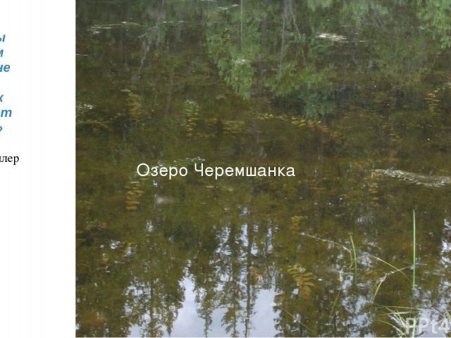 Озеро Черемшанка «Воду мы начинаем ценить не раньше того, как высыхает колодец» Томас Фуллер