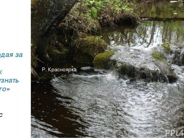 «Наблюдая за водой, Человек может узнать так много» Николас Спаркс Р. Красноярка